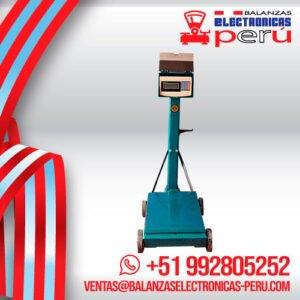 Balanza Electromecánica e-Accura SB53 de 500 Kilos